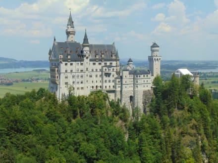 Schloss Neuschwarnstein  - Schloss Neuschwanstein