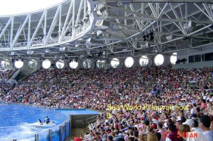 Zuschauer - Sea World