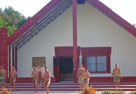 Maori - Rotorua