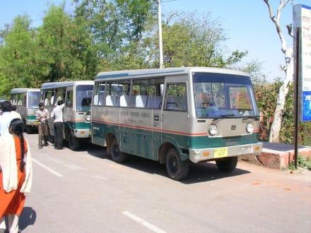 Transportmittel zum Taj Mahal - Taj Mahal