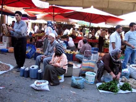 Marktleben - Markt