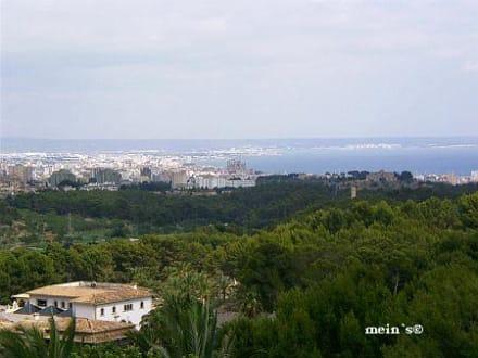 Aussicht von der Terrasse - Castillo Hotel Son Vida