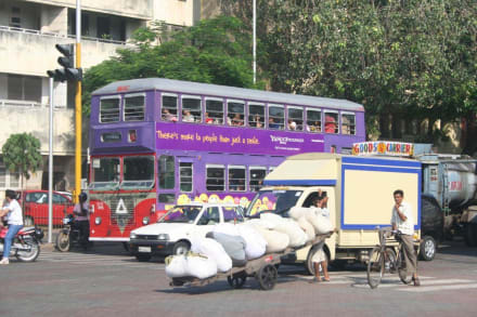 Mitten in Mumbai - Bombay