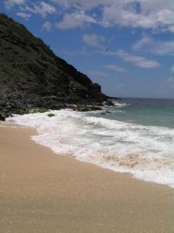 Der beste Strand auf Isla Margarita - Playa Manzanillo