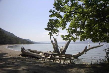 Kusadsi/Mlili-Park Naturschutzgebiet - Milli Park
