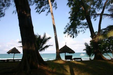 Blick aufs Meer - Geführte Touren Diani Beach