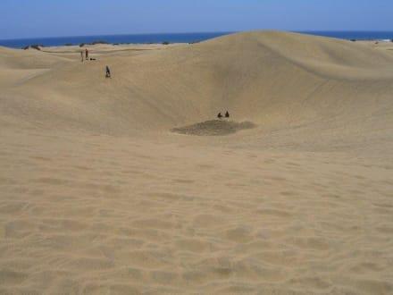 Unglaublich, wie hoch die Dünen sind... - Dünen von Maspalomas