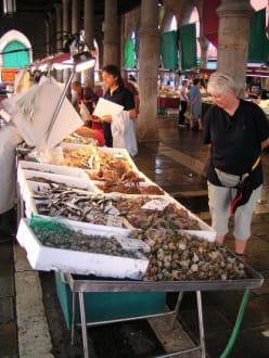 Fischmarkt in Venedig (Pescheria) 3 - Fischmarkt (Pescheria)
