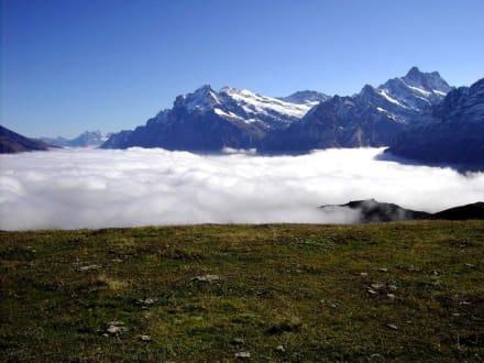 Panoramaweg Männlichen-Kleine Scheidegg (4) - Männlichen Gipfel