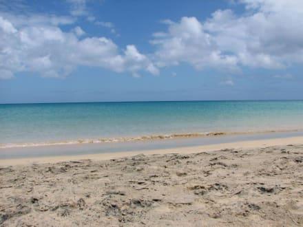 Beginn des Sotavento Strand - Playa Barca