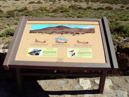 El Teide Skizze - Teide Nationalpark