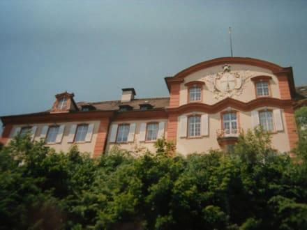 Schloss Mainau - Insel Mainau