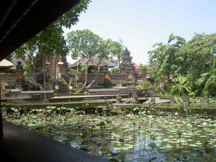 Ausblick vom Cafe - Cafe Lotus