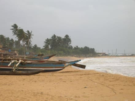 Strand in Negombo - Negombo Strand