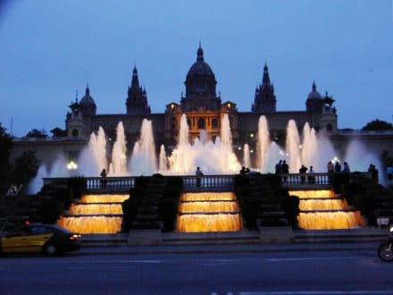 Museu National d' Art de Catalunya - Palau Nacional