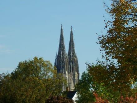 Der Dom - Dom St. Peter