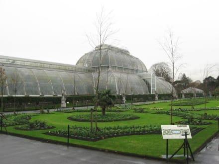 viktorianisches Palmenhaus - Kew Gardens