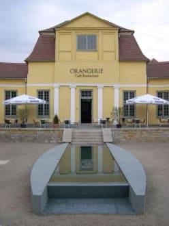 Restaurant Orangerie - Restaurant Orangerie