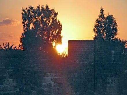 Bosra - Römisches Amphietheater und Säulenallee