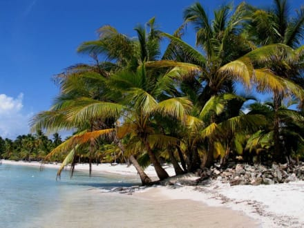 Insel Saona II - Isla Saona