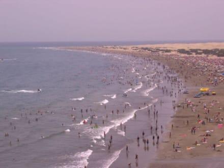 Strand von Playa del Inglés - Strand Playa del Ingles