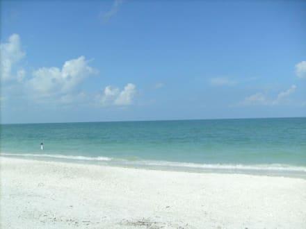 Barefoot Beach - Barefoot Beach State Preserve