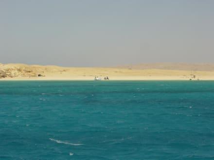 Bootstour zur Giftun-Insel - Giftun / Mahmya Inseln