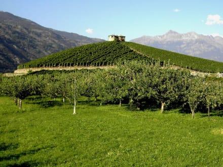 Aosta Weinland - Aosta