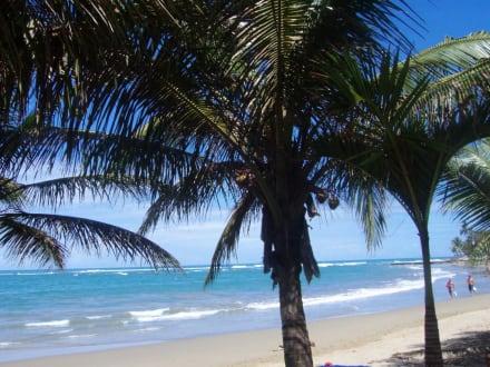 Strand zum Träumen - Playa Cabarete