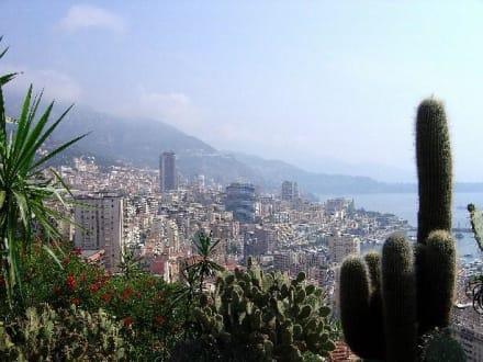 Botanischer Garten von Monaco - Botanischer Garten Monaco Monte Carlo