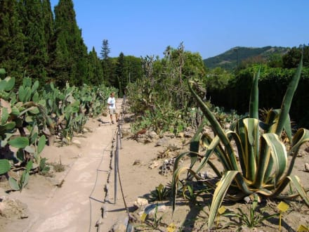 Botanischer Garten - Botanischer Garten Baltschik