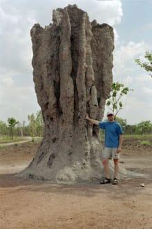 Termitenhügel - Kakadu National Park