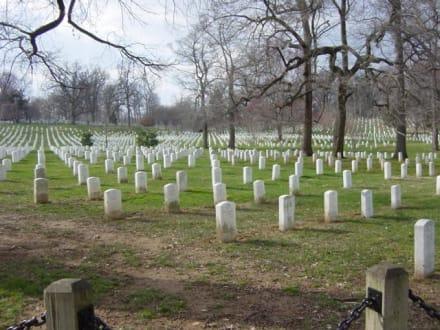 Arlington National Cemetery - Arlington National Cemetery