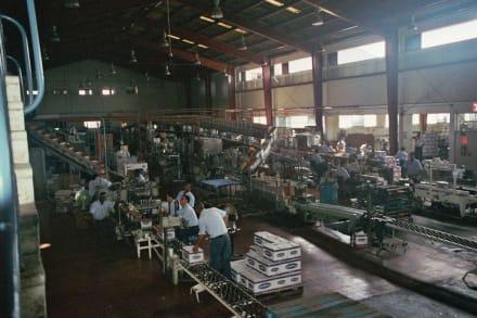 Fabrik - Rumfabrik Brugal