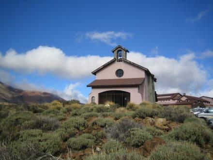Am Teide - Teide Nationalpark