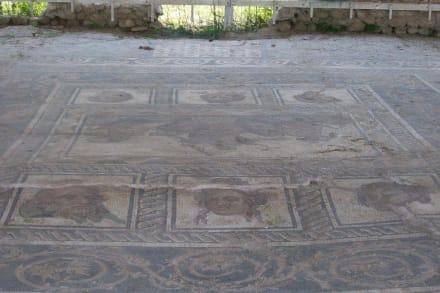 Mosaikboden - Ausgrabung Dion