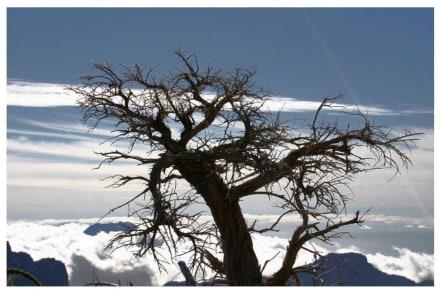 Pico de la Cruz - Roque de los Muchachos