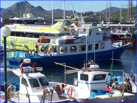 Boot für Küstenfahrten - Yachthafen Cala Ratjada