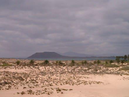 Strand am RIU Hotel mit Blick auf die Inseln - Strände Corralejo