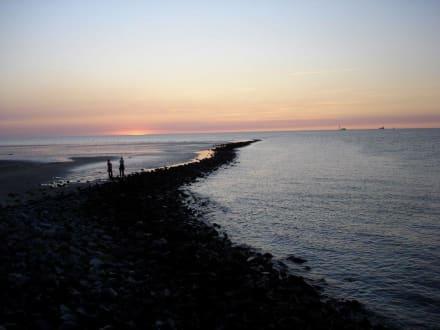 Wattwanderung vor Cuxhaven - Wattwanderung Cuxhaven