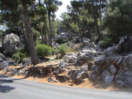 Straße nach Sa Coma - Bucht Sa Calobra / Torrent de Pareis