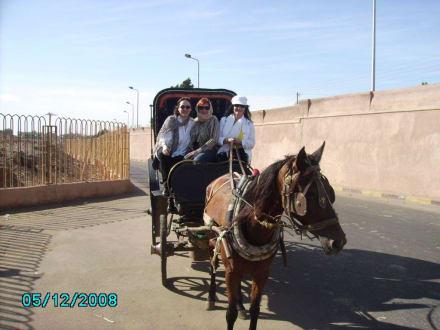 Kutschenfahrt - Transport