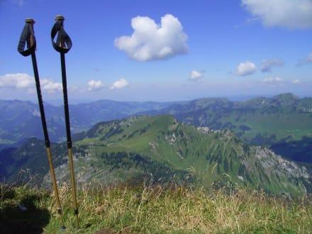 Blick vom Diedamskopf - Diedamskopf