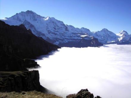 Panoramaweg Männlichen-Kleine Scheidegg (1) - Männlichen Gipfel