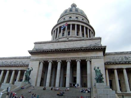 Das Capitol - Ausflüge & Touren