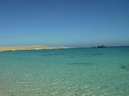 Ein Traum  in Ägypten - Giftun / Mahmya Inseln