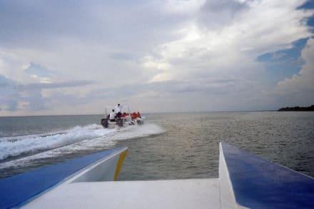 Speedboot nach Saona - Isla Saona