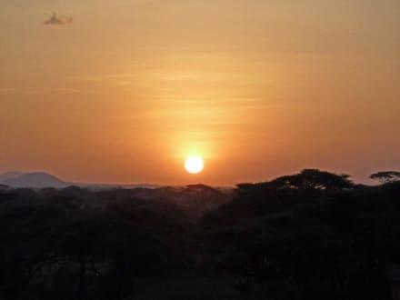 Sundowner vom Aussichtsturm aus - Kilima Safari Camp