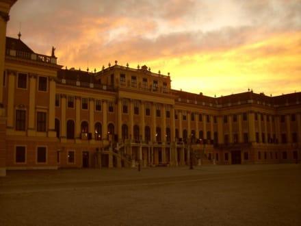 Schloss Schönbrunn bei Sonnenuntergang - Schloss Schönbrunn