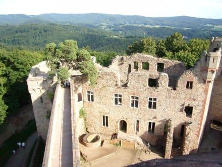 Auerbacher Schloss: Turmblick - Schloss Auerbach